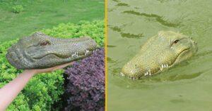 távirányítású krokodilfej
