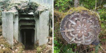 Erdőben talált furcsaságok