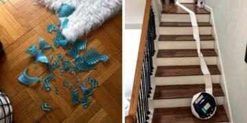 Ház takarítási kudarcok