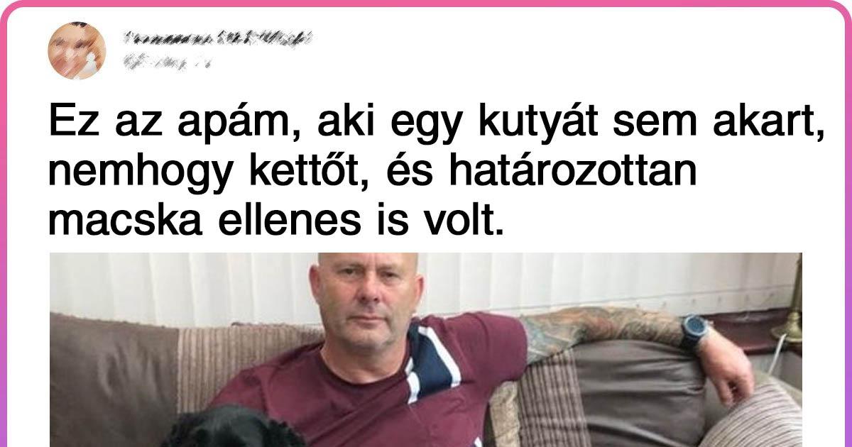Állat ellenes apukák