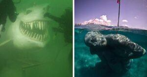 Ijesztő víz alatti dolgok
