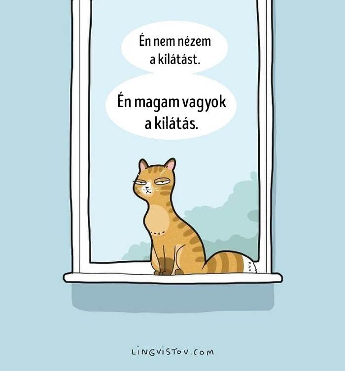 Macska kepregenyek