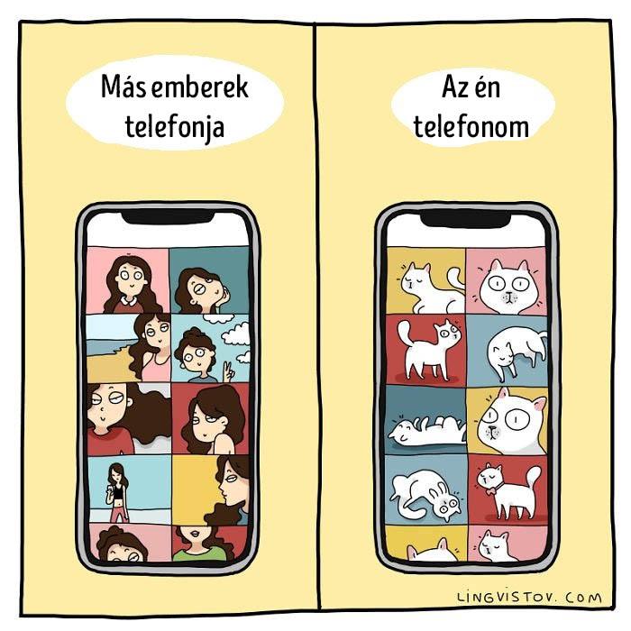Macska telefon