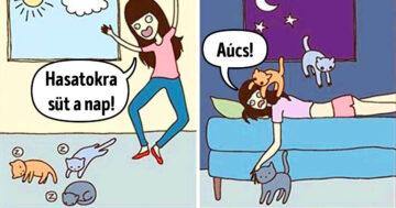 Macskás képregények