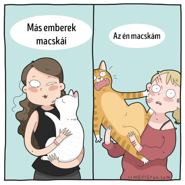 Mas emberek macskai enyem