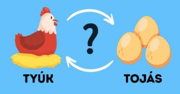Tyúk vagy tojás