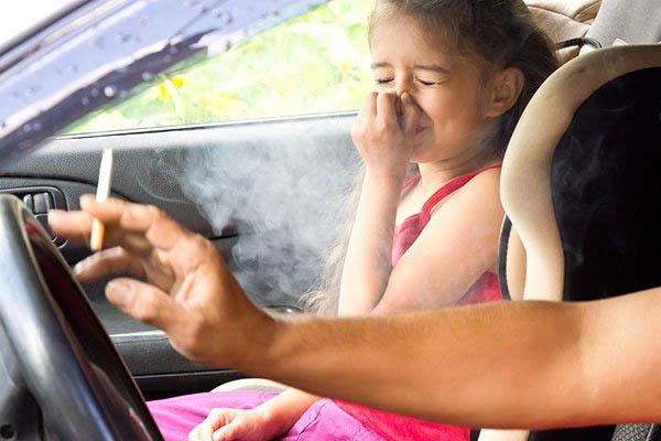 Cigizes a kocsiban