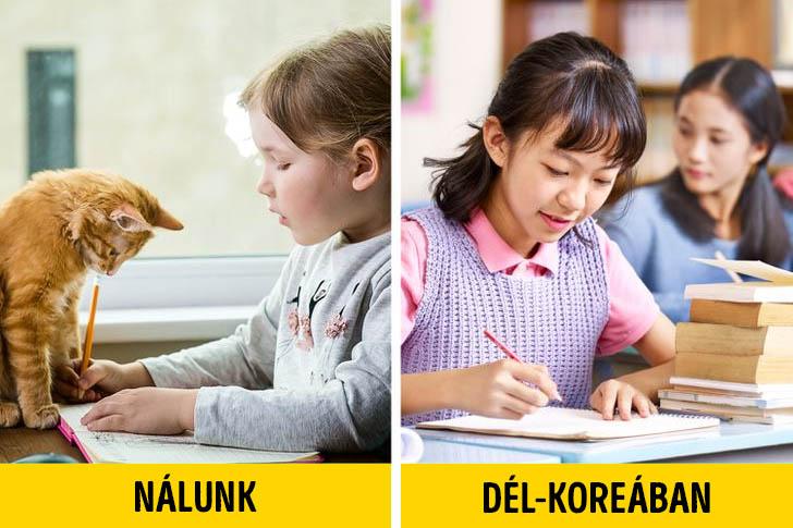 Dél koreai oktatás