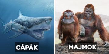 Ma élő állatok ősei
