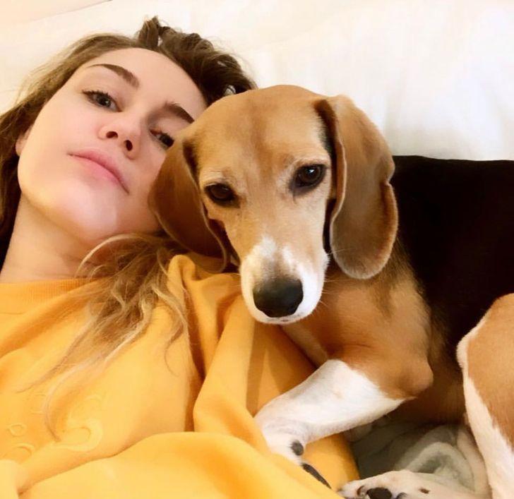 kutya nyelv