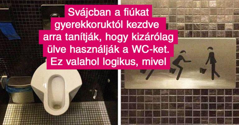 18 érdekes tény a Svájcról, ahol arra nevelik a fiúkat, hogy ne állva használják a WC-t