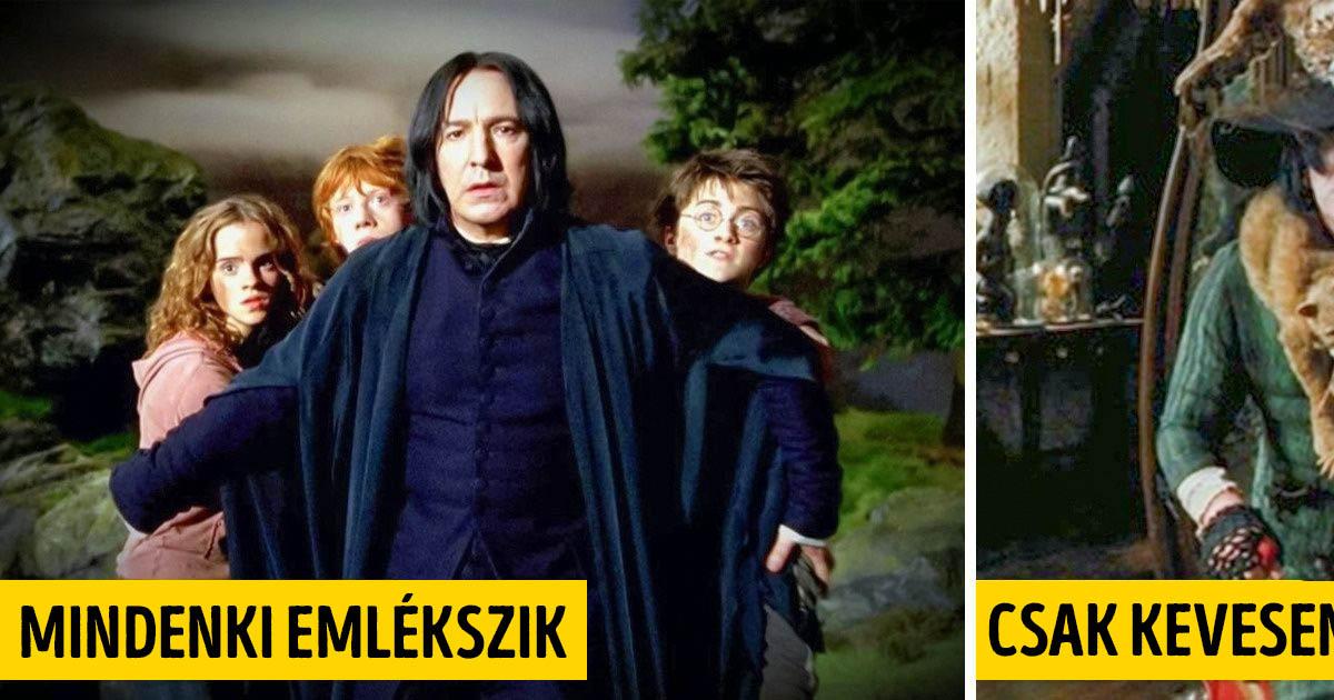 Harry Potter és Piton professzor