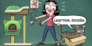 Macskakódex dolgok