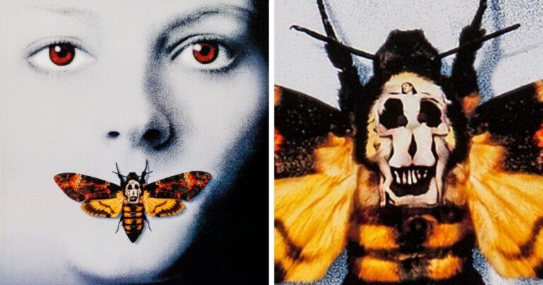 15 rejtett részlet a híres filmek plakátjain, amiket csak nagyon kevesen vettek észre