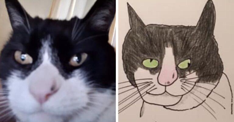 19 alkotás egy művésztől, aki olyan rosszul rajzol állatokat, hogy az szinte már zseniális